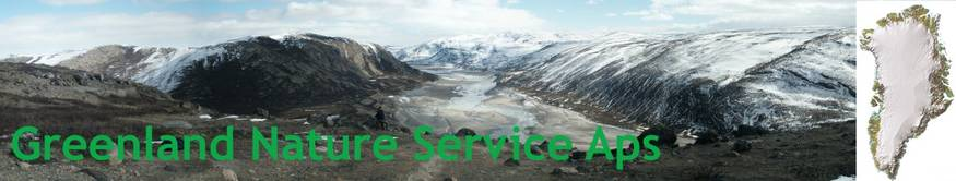 Greenland Nature Service ApS - Banner